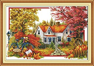 Full Range of Embroidery Starter Kits Stamped Cross Stitch Kits Beginners for DIY Embroidery with 40 Pattern Designs - Autumn House