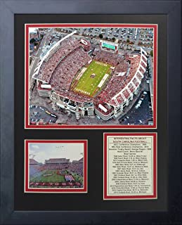 Legends Never Die South Carolina Gamecocks Williams-Brice Stadium Framed Photo Collage, 11 by 14-Inch