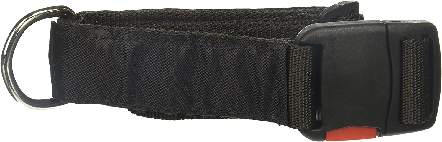 Dean and Tyler Patch Collar , Nylon Dog Collar with DO NOT PET SERVICE DOG Patches  Black  Size  Large  Fits Neck 26Inch to 37Inch