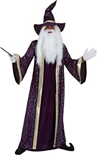 Adult Purple Wizard Costume Men's Fairytale Sorcerer Costume