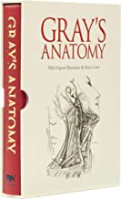 Grays Anatomy: Slip-Case Edition