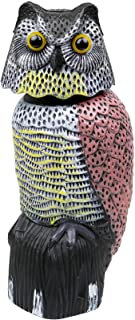 Best Galashield Owl Decoy to Scare Birds Away Scarecrow Fake Owl with Rotating Head Review