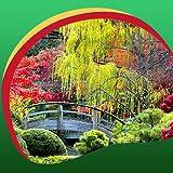 Imágenes de Eastern Garden Live