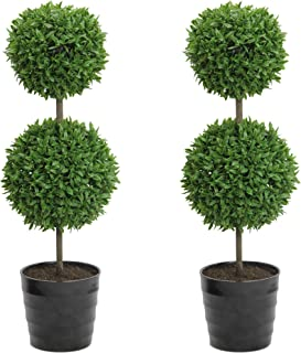 Admired By Nature Tabletop English Artificial Boxwood, Twin Pack
