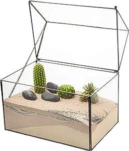 Ultra 22x 15.3 x19cm Boîte Style Verre Transparent Terrarium Jardinières Forme Géométrique pour Affiche Les Mariages Pièce Maîtresse Unique ou Plantes de l'air Fougère Mousse Jardin Intérieur