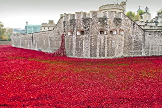 Andrew Evans Photos Tower of London Poppy Poppies Photograph Blood Swept Lands and Seas of Red England UK Landscape Photo Color Picture fine Art Print or Poster Photography Gift Present (18