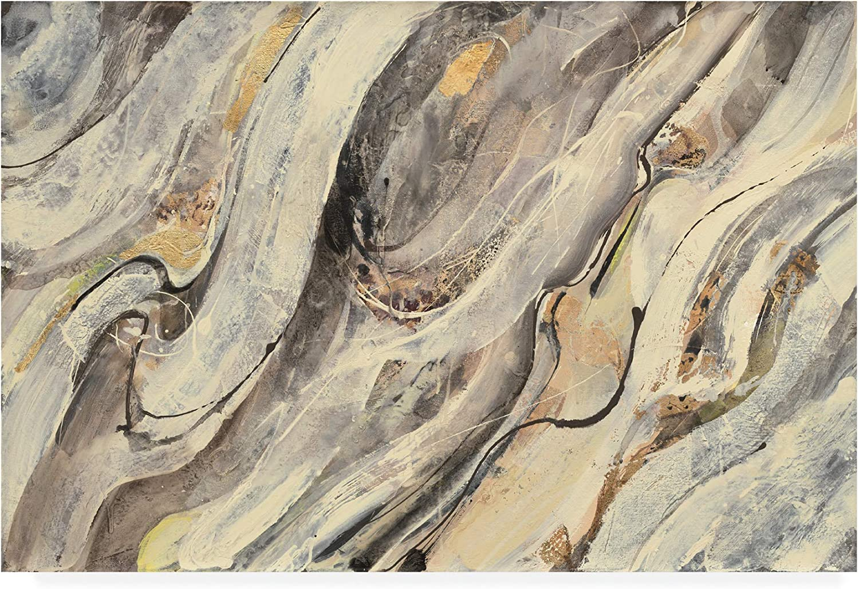 Trademark Fine Art golden Falls Paint by Albena Hristova, 12x19
