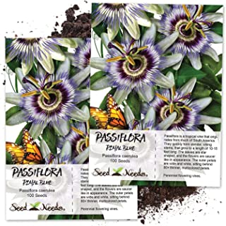 Best passiflora passion fruit Reviews