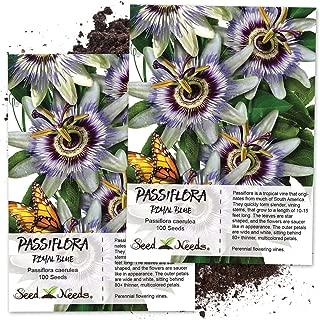 Best blue crown passion flower Reviews