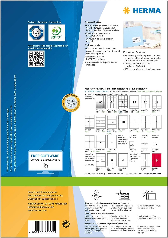 Etiquetas rectangulares 9,6 cm x 5 cm, 250 unidades color plateado Herma 4099