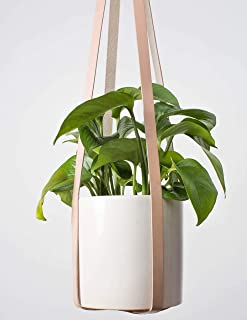 Best leather hanging planter Reviews