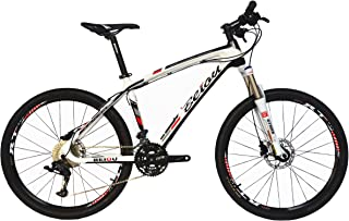 BEIOU Carbon Fiber Mountain Bike Hardtail MTB LTWOO 30 Speed 13kg 26
