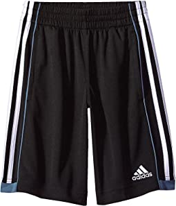 adidas Kids - Next Speed Shorts (Big Kids)