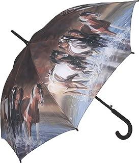 horse with umbrella