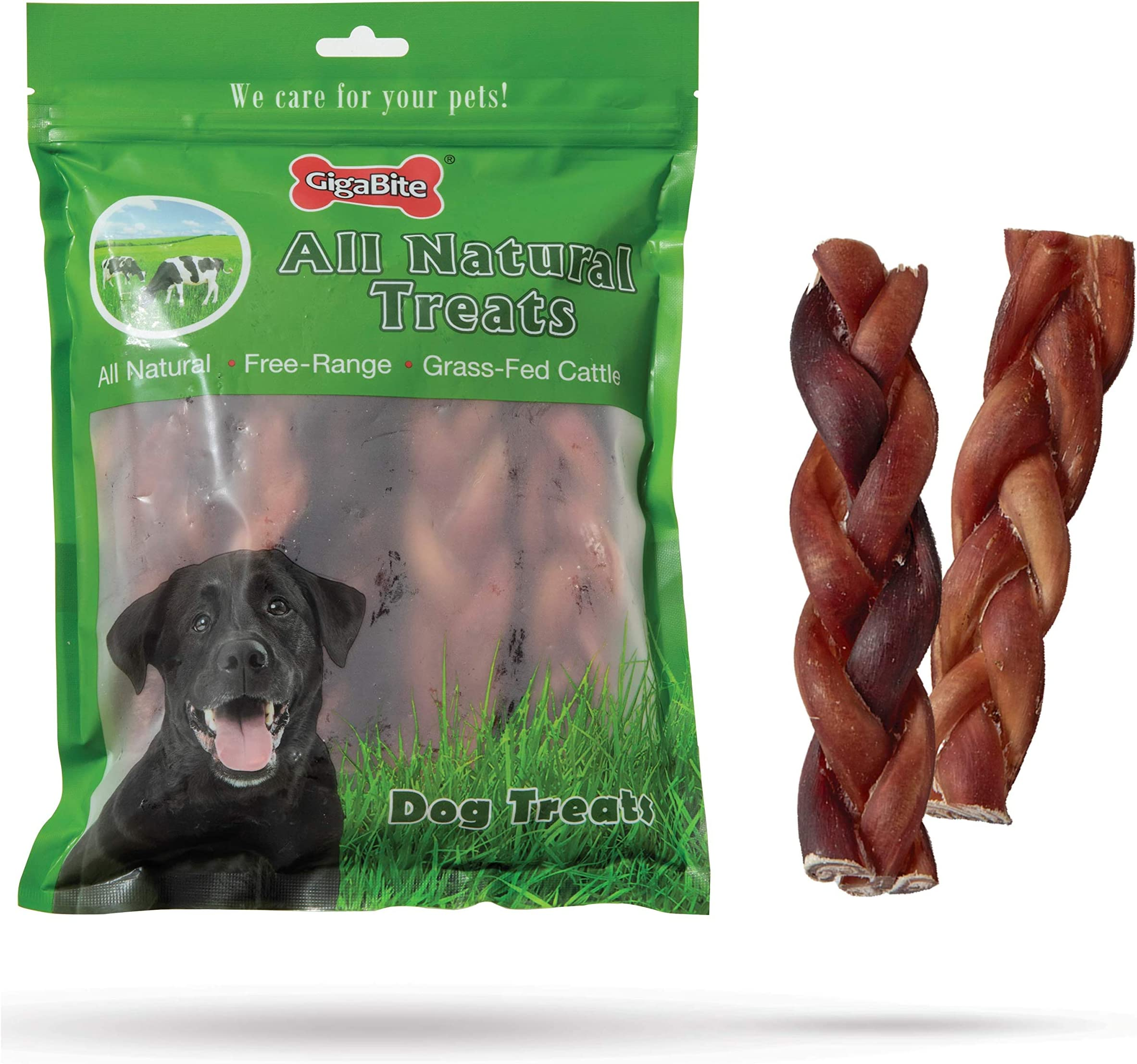 GigaBite 6 Inch Braided Bully Sticks (10 Pack) - All Natural, Free Range Beef Pizzle Dog Treat - By Best Pet Supplies, 6-Inch (BB-06-10)