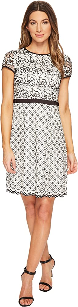 Adrianna Papell Dresses Women Shipped Free At Zappos