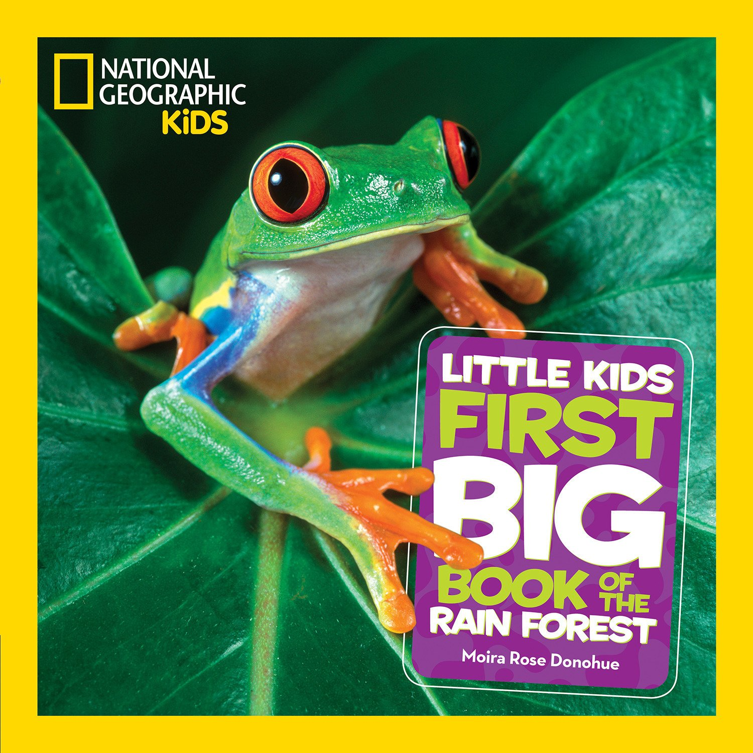 Download National Geographic Little Kids First Big Book of the Rain Forest