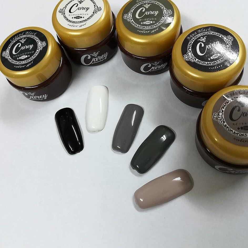 スクラップ水銀の汚物ジェルネイル モノトーンカラー 5色セット