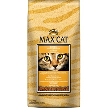 Nutro MAX Dry Cat Food - All Life Stages, Chicken & Salmon