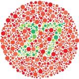color blindness chart - Color Blindness Test