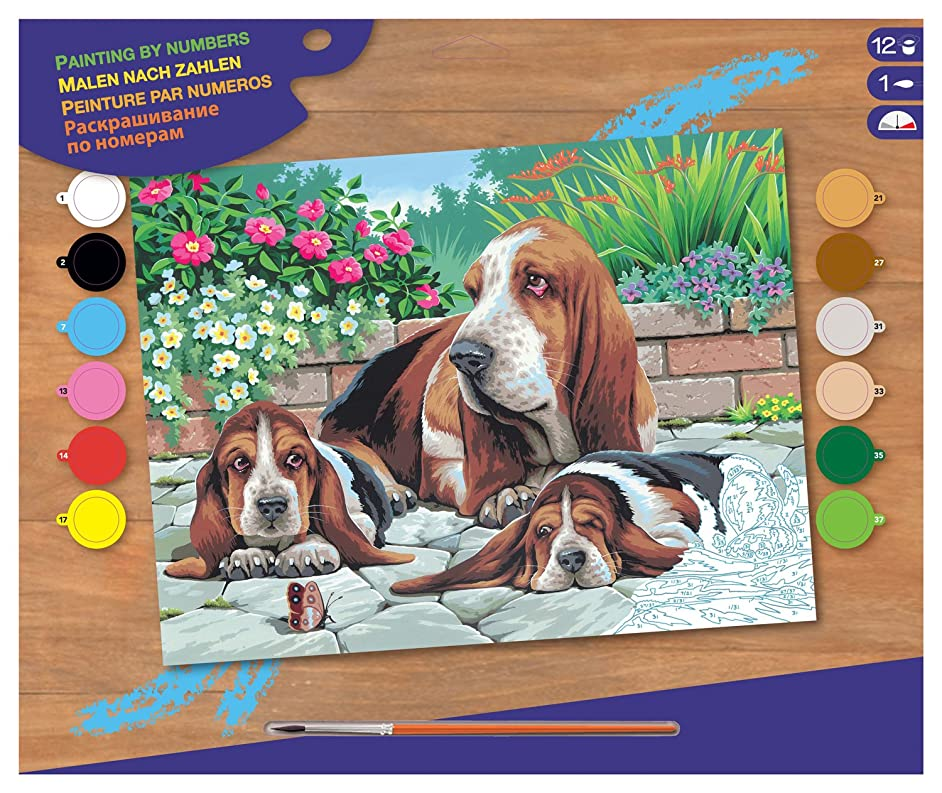 KSG - Basset Hounds Masterpeice Senior Paint by Number