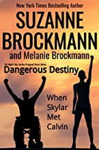 Dangerous Destiny: (When Skylar Met Calvin) (Night Sky Book 0)