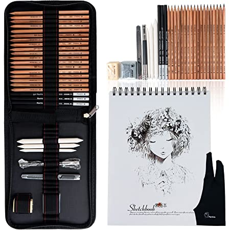 30 Pieces Professional Art Supplies Kit with Graphite Pencils, Charcoal Pencils, with 50 Sheets Large Size Sketchbook, Blending Stumps, Portable Carry Case for Sketching Drawing-Lightwish