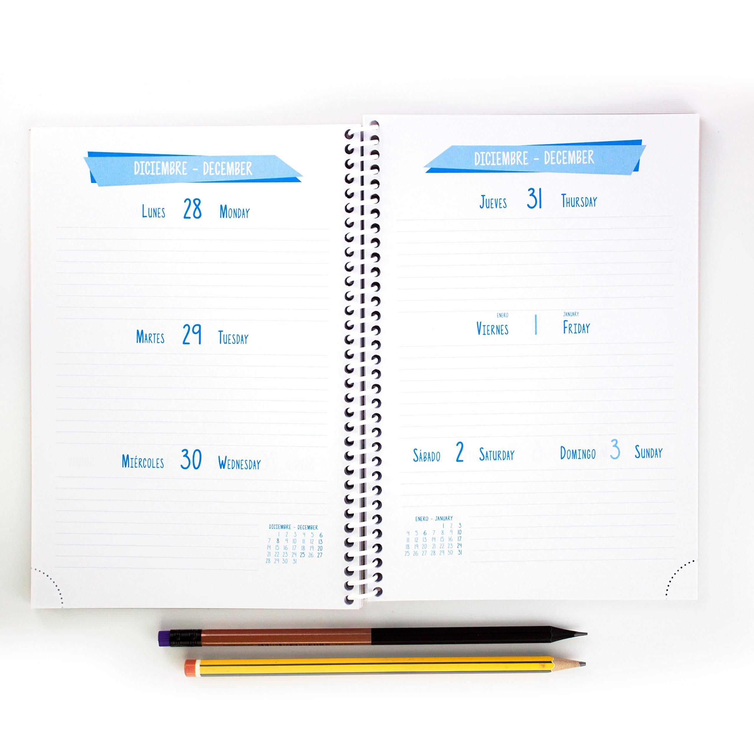 Casterli - Agenda Escolar 2020-2021 Basic Edition - Semana Vista, Tamaño A5 (Verde): Amazon.es: Oficina y papelería
