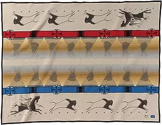 Best pendleton indian blankets sale Reviews