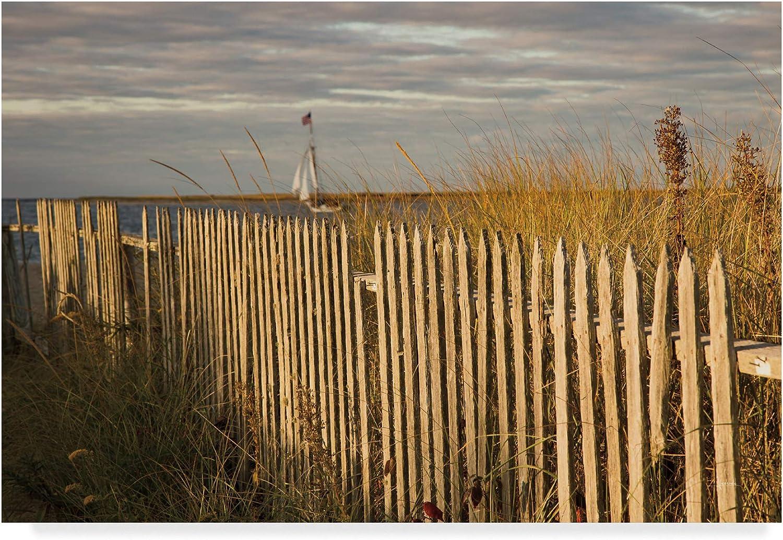 Trademark Fine Art Along The Beach Fence I by Aledanda, 12x19
