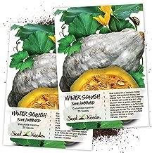 Seed Needs, Blue Hubbard Winter Squash (Cucurbita Maxima) Twin Pack of 20 Seeds Each Non-GMO