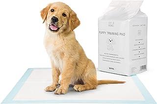 EVERANIMALS Empapadores Perros - Toallitas de adiestramiento Perros- Máxima absorción (50 Unidades)