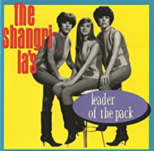 Best leader of the pack music Reviews