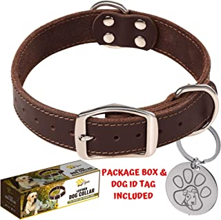 Leather Collar Puppy Small Medium