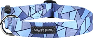 West Paw Outings Collar, Medium, Blue Fractal