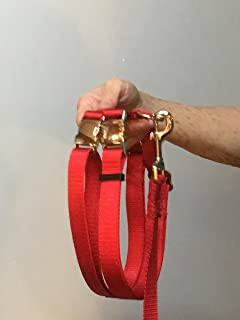 mini pot belly pig harness