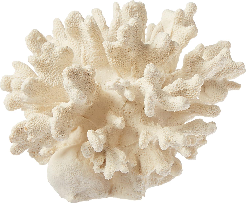 Deep bluee Professional ADB80060 Cauliflower Coral for Aquarium, 6 by 6 by 4Inch