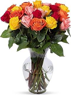 Benchmark Bouquets 2 Dozen Rainbow Roses, With Vase (Fresh Cut Flowers)