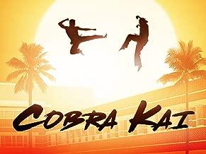 Best cobra season 1 Reviews