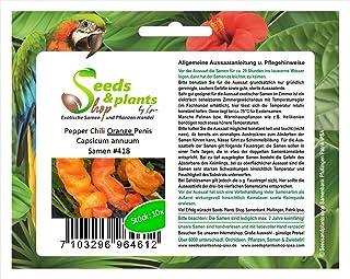 Stk - 40x Penis Chili Rot Gelb Grün Orange Pflanzen - Samen #418 - Seeds Plants Shop Samenbank Pfullingen Patrik Ipsa