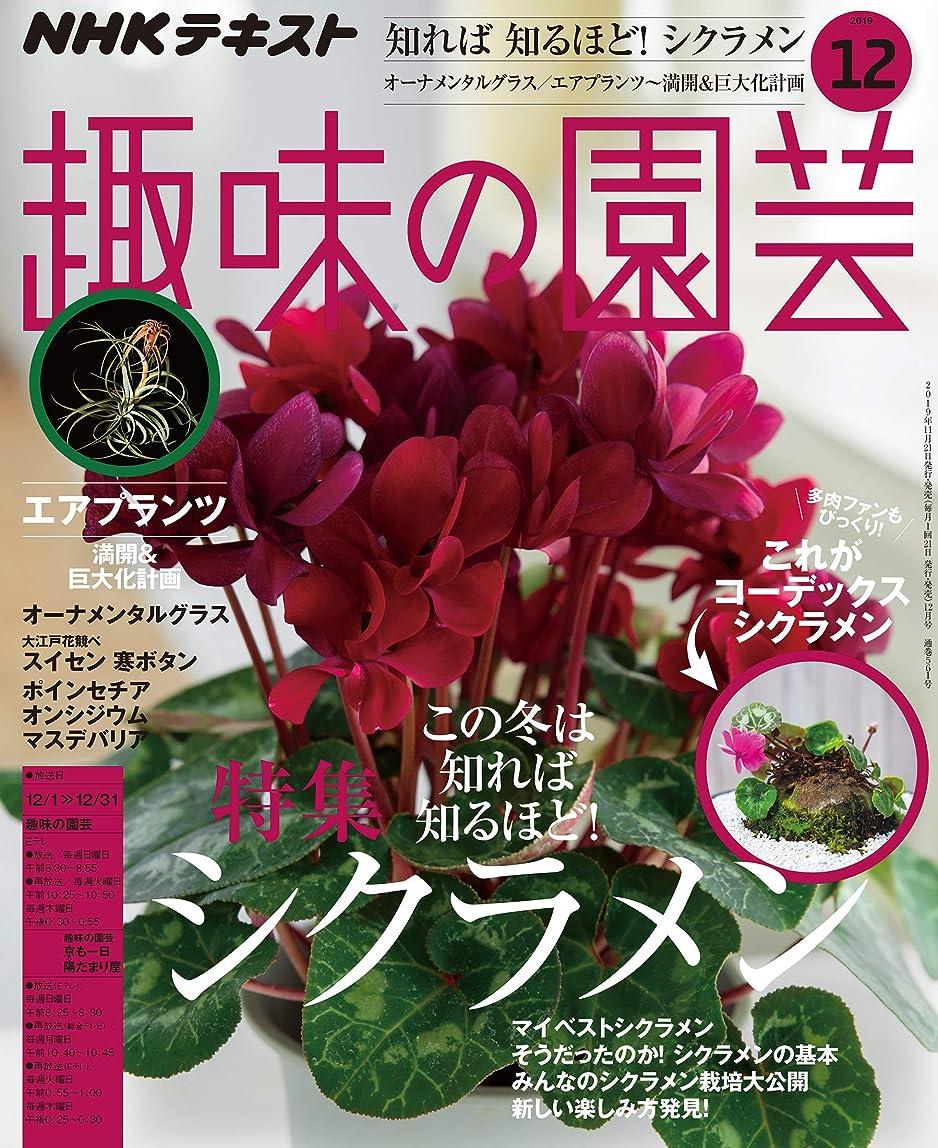 トンネル素晴らしいです牧師NHK 趣味の園芸 2019年 12月号 [雑誌] (NHKテキスト)