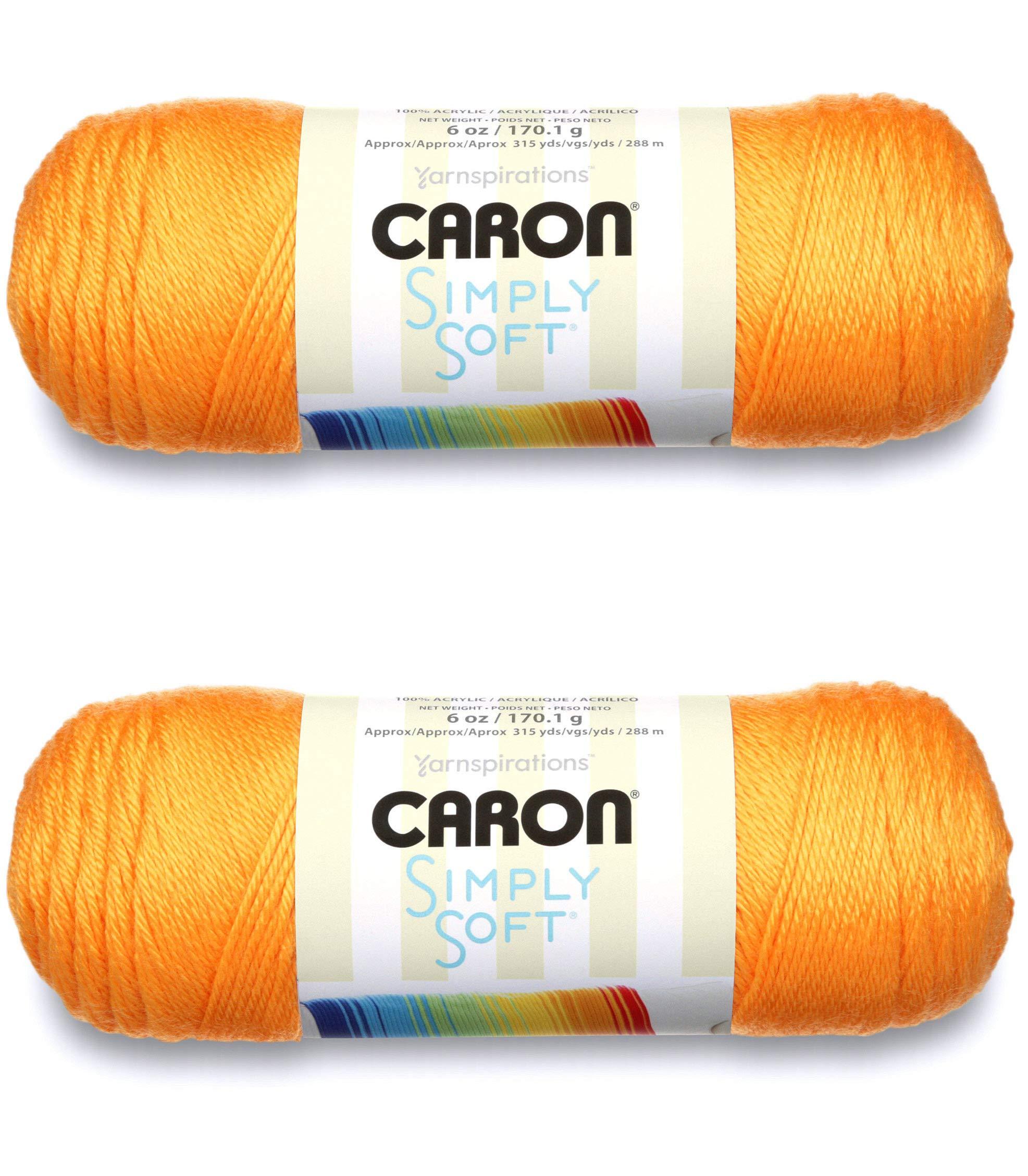 Caron Simply Soft Brites - 2 只装球-170g 每只球-芒果