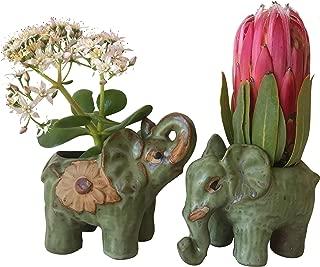 Elephant Planter Pot | Succulent Flower Gifts Home Decor | Succulent Planter Pot Indoor Ceramic Elephant for Home Office Desk, Garden Decor | Set of 2 Glazed Hand Made Ceramic Molds