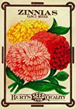 Zinnias - Vintage Seed Packet (24x36 Fine Art Giclee Gallery Print, Home Wall Decor Artwork Poster)