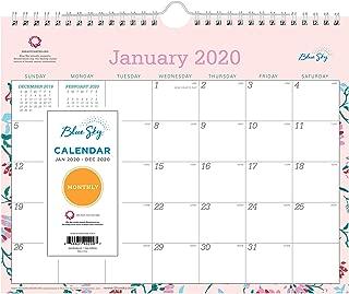Blue Sky 2020 Monthly Wall Calendar, Twin-Wire Binding, 11
