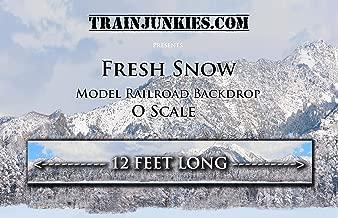Train Junkies Fresh Snow- Model Railroad Backdrop O Scale