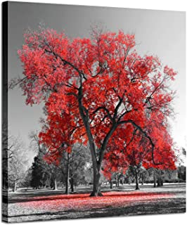 Big Red Tree in The Morning Autumn in Black and White, Landscape Photographic Print on Wrapped Canvas for Wall Decor