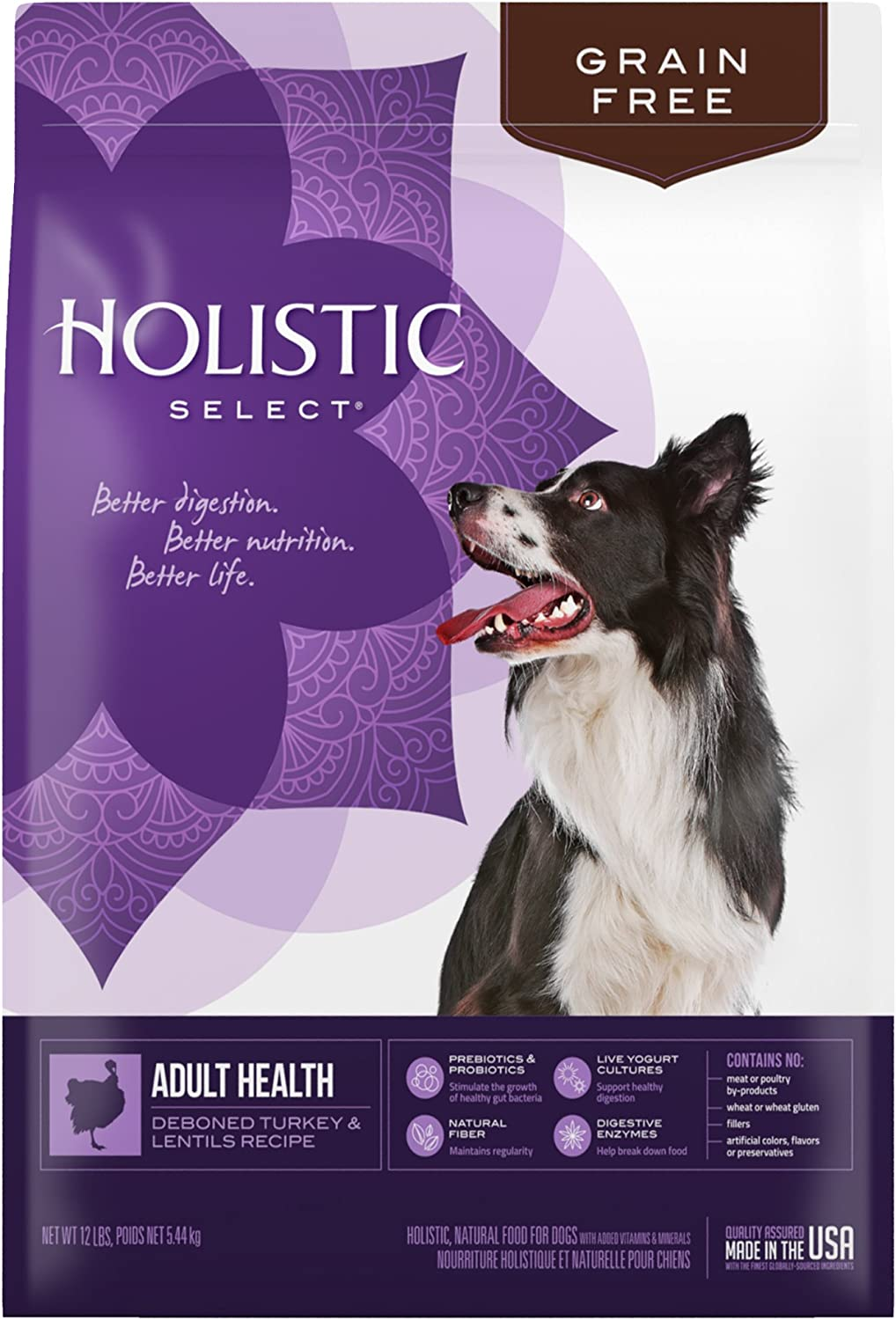 Holistic Select Grain Free Turkey Natural Dry Dog Food, 13Pound Bag