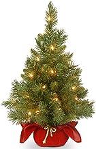 National Tree Company Pre-lit Artificial Mini Christmas Tree   Includes Small LED Lights, and Cloth Bag Base   Majestic Fi...