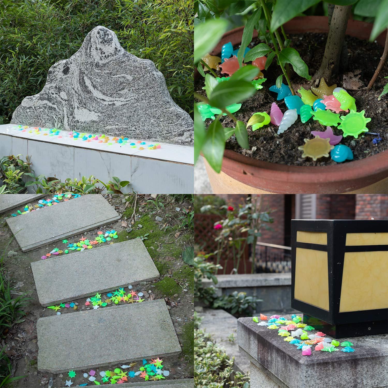ECHOAN 200Pcs Piezas Piedras Luminosas,Piedras Decorativas Guijarros,para Jardín Hogar Aire Libre Parques Peceras Acuario y Lago: Amazon.es: Jardín